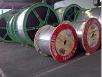 http://sinarsuryalestarigroup.com/assets/images/product/Bando Conveyor Belt